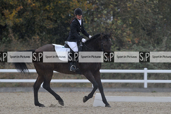 Class 8. Elementary 49. Unaffiliated Dressage. Brook Farm Training Centre. Essex. 06/11/2016. MANDATORY Credit Garry Bowden/Sportinpictures - NO UNAUTHORISED USE - 07837 394578