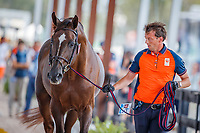 NED-Harrie Smolders presents during the 2nd Horse Inspection for the FEI World Individual Jumping Championships. 2018 FEI World Equestrian Games Tryon. Saturday 22 September. Copyright Photo: Libby Law Photography