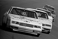 Dale Earnhardt leads a line of cars during a qualifying race at Daytona in February 1986.(Photo by Brian Cleary)