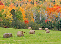Autumn Round Bales, closer