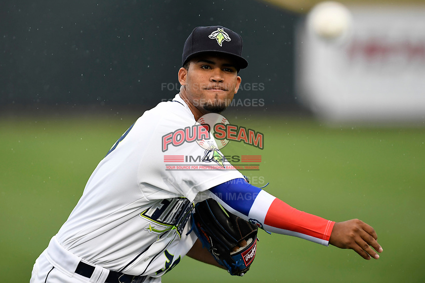 Starting pitcher Merandy Gonzalez (38) of the Columbia Fireflies with the South team warms up before the South Atlantic League All-Star Game on Tuesday, June 20, 2017, at Spirit Communications Park in Columbia, South Carolina. The game was suspended due to rain after seven innings tied, 3-3. (Tom Priddy/Four Seam Images)