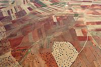 Oliven und Getreidefelder in der La Mancha: SPANIEN, LA MANCHA 03.07.2018: Oliven und Getreidefelder in der La Mancha