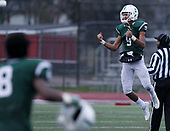 West Bloomfield defeats Detroit Cass Tech 9-7 in Division 1 semifinal football action against Detroit Cass Tech at Troy Athens High School Saturday, Nov. 18, 2017. (For The Oakland Press / LARRY McKEE)
