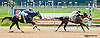 Flipion winning at Delaware Park on 5/30/13