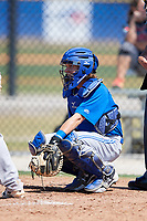 Toronto Blue Jays catcher Reilly Johnson (7) during a Minor League Spring Training game against the New York Yankees on March 18, 2018 at Englebert Complex in Dunedin, Florida.  (Mike Janes/Four Seam Images)