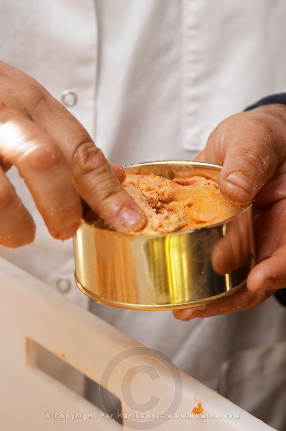 How to make foie gras duck's liver (series of images): The pieces of duck liver are put in a conserve tin can and lightly pressed Ferme de Biorne duck and fowl farm Dordogne France Workshop on how to make foie gras duck liver pate and other conserves