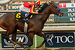 ARCADIA, CA  JANUARY 06: #6 McKinzie, ridden by Mike Smith, wins the Sham Stakes (Grade lll) on January 6, 2018, at Santa Anita Park in Arcadia, CA.  (Photo by Casey Phillips/ Eclipse Sportswire/ Getty Images)