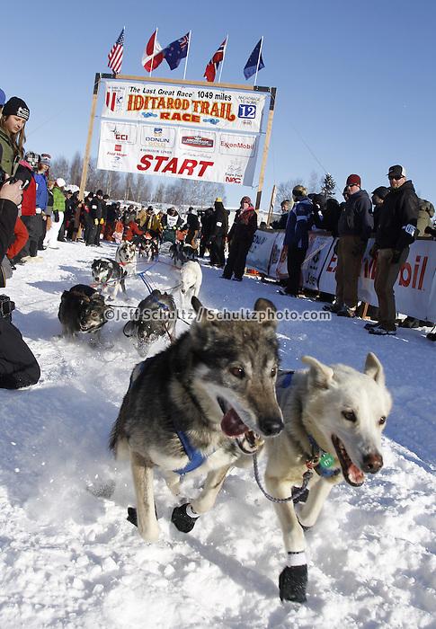 Sunday, March 4, 2012  Kirk Barnumj leaves the restart of Iditarod 2012 in Willow, Alaska.