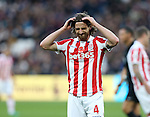 Stoke's Joe Allen looks on dejected after a missed chance during the Premier League match at the London Stadium, London. Picture date November 5th, 2016 Pic David Klein/Sportimage