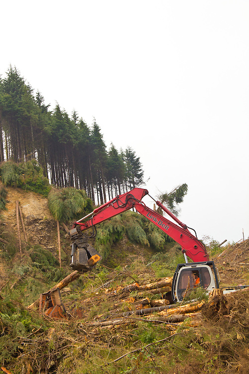 Nature Conservancy, Washington Chapter, Ellsworth Creek Preserve, forest restoration, forest thinning, blowdown prevention, Michael Innis, log loader operator, Emerald Edge Project, Willapa Bay, Pacific County, Washington Coast, Washington State, Pacific Northwest, United States,