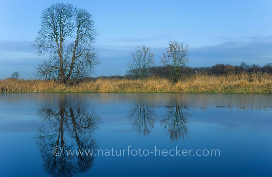 Rieselfelder Münster, Naturschutzgebiet, Europäisches Vogelschutzgebiet, Deutschland