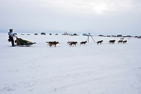 The first ever Jamaican musher, Newton Marshall, runs on the Nome River with fish camp shacks in the background as he nears the  finish line in Nome during the 2010 Iditarod