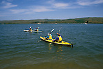 CA, california, kayakers at Tomales Bay, Point Reyes..Photo camari201.   .Photo Copyright: Lee Foster, www.fostertravel.com, 510-549-2202, lee@fostertravel.com