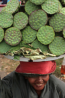 Lotus Street Vendor, Lotus roots are en edible if not delectable snack popular with Cambodians.