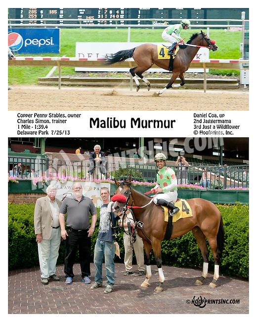Malibu Murmur winning at Delaware Park on 7/27/13