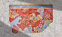 Minoan 'Blue Monkey' wall art fresco from the 'House of Frescoes' Knossos Palace, 1600-1500 BC. Heraklion Archaeological Museum.