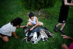 TIME, Arapahoe County Assignment..Small towns in far eastern Arapahoe County.  Byers, Deer Trail, Aurora, Watkins...Western towns, urban.  Littleton, Aurora....Brittany and Nick Koppman tend to a mother and her puppies outside a home in Aurora, Colorado.