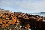 Remains of old oil drums and other military garbage rust into the Canadian Tundra, Nunavut, Canada. In the background the landscape and pristine snow covered mountains of Baffin Island.