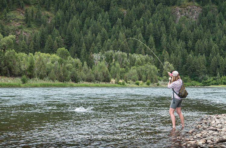 Alexis Metcalf plays a cutthroat trout while fly fishing on the South Fork of the Snake River, Idaho.