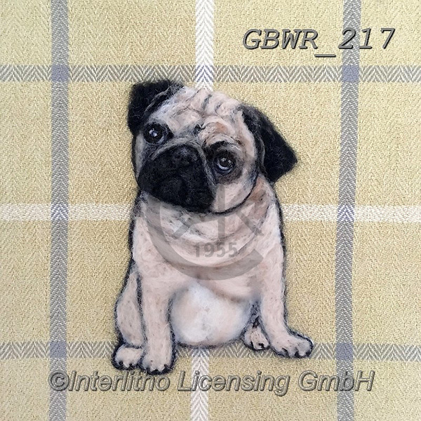 Simon, REALISTIC ANIMALS, REALISTISCHE TIERE, ANIMALES REALISTICOS, innovative, paintings+++++SharonS_Pug,GBWR217,#a#, EVERYDAY dogs,breeds of dog,