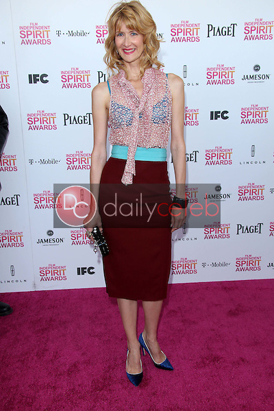 Laura Dern<br /> at the 2013 Film Independent Spirit Awards, Private Location, Santa Monica, CA 02-23-13<br /> David Edwards/DailyCeleb.com 818-249-4998