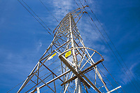 © Stephen Daniels--08/09/2017-----<br /> Power Tower at Flawborough Farm, Flawborough, Nr Grantham, Lincs/Nots<br /> <br /> REMOVE OF THE META DATA AND COPYRIGHT INFORMATION WILL CONSTITUTE ACT THIEFT AND DECEPTION AND BE SEEN AS ACT TO DEPRIVE ME OF ALL FEES OUT DUE.<br />  -------<br /> THIS PICTURE MUST BE CLEARED BEFORE USE. -If breached £10m-------------------<br />  *-------------------------------------------------------------------<br /> >------<br /> >------<br /> All images are supplied & used under the terms and condition of Stephen Daniels and not publication which use them.<br /> All images which is the copyright of Stephen Daniels<br />  are supplied under the terms and <br /> condition of Stephen Daniels. By using the image you<br /> agree them in full.----<br /> >