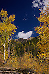 Autumn, La Plata Mountains, Colorado.  Available in sizes up to 30 x 45 inches.