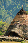 Old woman and child in front of traditional thath-roffed home, Wae Rebo village, Manggarai, Flores