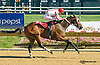 Twocubanbrothersu winning at Delaware Park on 8/25/15