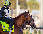LOUISVILLE, KY - MAY 01: Hofburg at Churchill Downs on May 1, 2018 in Louisville, Kentucky. (Photo by Alex Evers/Eclipse Sportswire/Getty Images)
