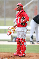 April 14, 2009:  Catcher Audry Perez of the St. Louis Cardinals extended spring training team during a game at Roger Dean Stadium Training Complex in Jupiter, FL.  Photo by:  Mike Janes/Four Seam Images