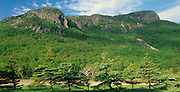 Eagle Cliffs located in Franconia Notch, which is in the White Mountain National Forest of New Hampshire USA.