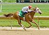 Es La Mia winning at Delaware Park on 5/12/12