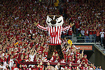 Wisconsin Badgers mascot Bucky Badger celebrates after the Badgers scored during an NCAA college football game against the Ohio State Buckeyes on October 16, 2010 at Camp Randall Stadium in Madison, Wisconsin. The Badgers beat the Buckeyes 31-18. (Photo by David Stluka)