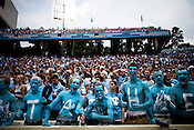 August 30, 2008. Chapel Hill, NC..  In the opening game of the season, the UNC Tarheels beat McNeese State 35- 27 in a game delayed by foul weather.. Fans show their support.