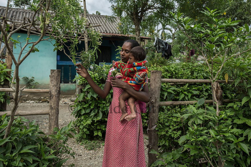 India – West Bengal: Hira Munda, 32, holding her 10-month-old baby Shonali at Bundapani Tea Estate, in the Dooars region. After the closure of the garden in July 2013, Munda, a former permanent worker, was trafficked to Batala, in the Punjab region, where she worked as a domestic worker for one year. The owner of the house repeatedly raped her. The woman was able to come back to Bundapani only after she became pregnant of Shonali. Today, the lone mother survives thanks to government subsidies and few handouts from her relatives.