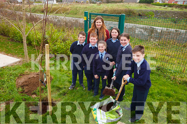 Pupils from St Oliver's NS Ballylongford had their new playground blessed by Fr Kennelly on Friday morning and also plated a tree. Pictured were: Sean O'Connor, Liam Walsh, Abbie Collins, Kayleigh Swanser, Eimear O'Shea, Christopher Higgins and teacher Danielle Riordan.