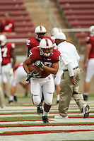 14 October 2006: Josh Catron during Stanford's 20-7 loss to Arizona during Homecoming at Stanford Stadium in Stanford, CA.