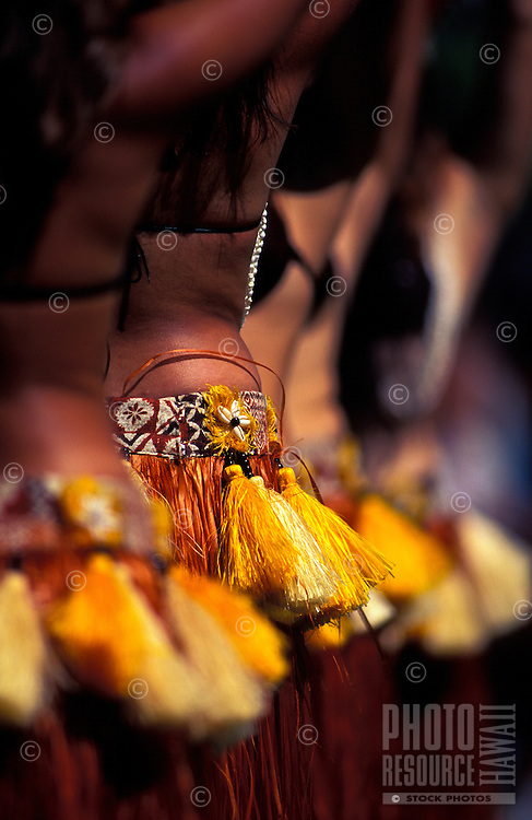 Torso shot of a line of tanned Tahitian dancers highlighting the colorful tassels on their hips, Hilo, Big Island