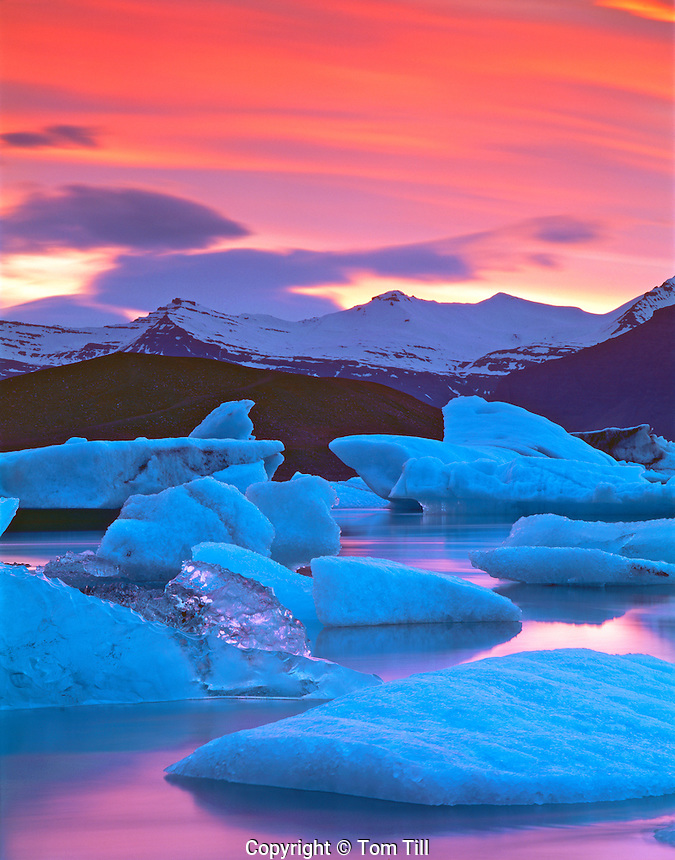 Ice Floe in June Midnight Sun, Calving from Vatnajokull Glacier, Jokulsarlon Lagoon Preserve, Iceland