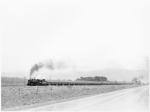 D&amp;RGW #494 leads a westbound freight of Monarch Branch empties. The full length of train is shown with an unknown helper on the end.<br /> D&amp;RGW  Poncha Junction, CO  Taken by Richardson, Robert W. - 9/18/1946