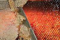 Small honey producers still use the uncapping knife to prepare the frames before putting them in an extractor.