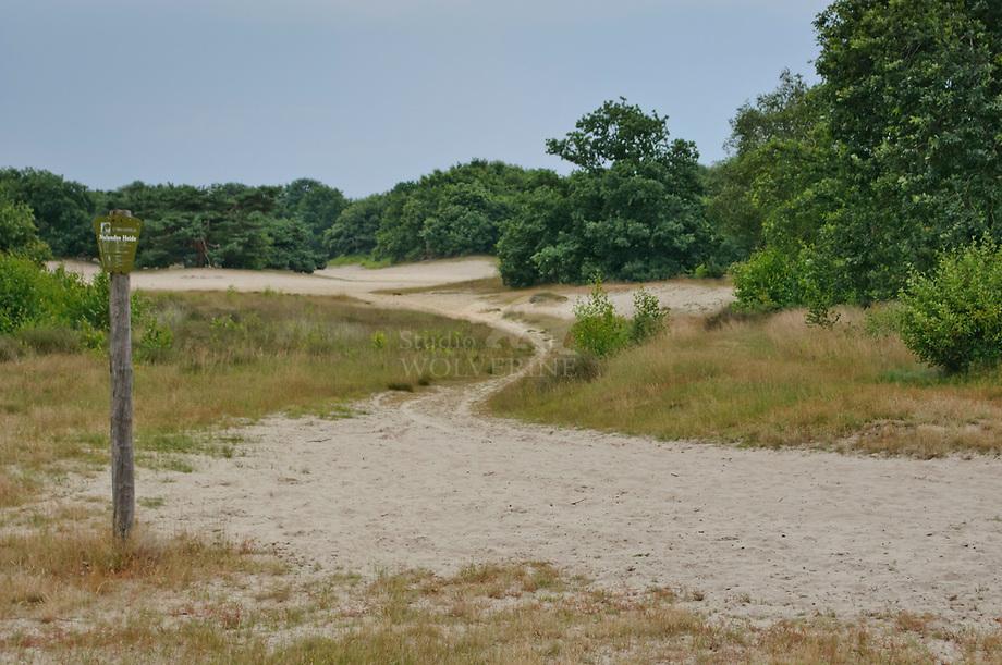 Nulandse duinen. Brabants landschap