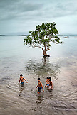 PHILIPPINES, Palawan, Puerto Princesa, view of a Bakawan tree and kids in front of the Badjao Seafood Restaurant