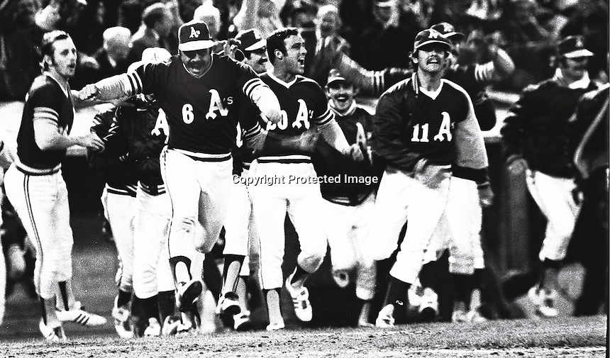 The A's charge the field after winning game four of the 1972 World Series. led by captain Sal Bando #6(center)..photo copyright 1972 Ron Riesterer