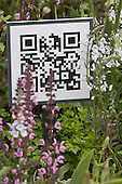 London, UK, 18 May 2013. QR code or Quick Response Code at a show garden. Press preview day at the RHS Chelsea Flower Show, London.