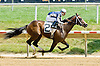 Bobcat Jim winning at Delaware Park on 7/5/12