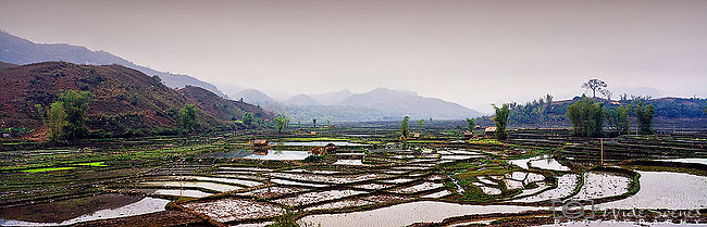 Vietnam Panorama - Rice terraces in north-west Vietnam.<br />