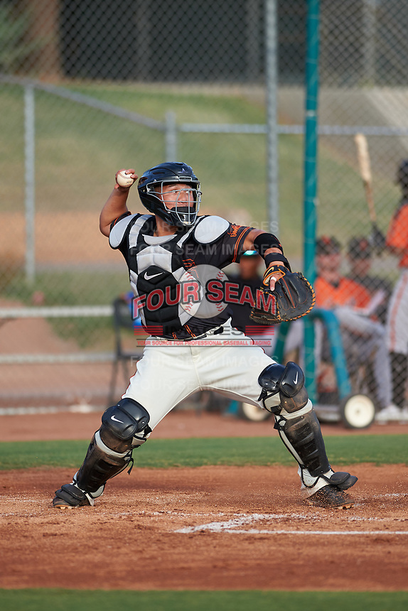 AZL Giants Black catcher Jin-De Jhang (6) during a rehab assignment in an Arizona League game against the AZL Giants Orange on July 19, 2019 at the Giants Baseball Complex in Scottsdale, Arizona. The AZL Giants Black defeated the AZL Giants Orange 8-5. (Zachary Lucy/Four Seam Images)