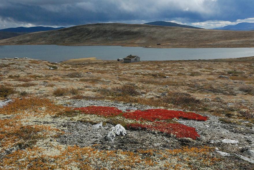 Cabins on Dovre mountain, Norway Landscape, landskap,